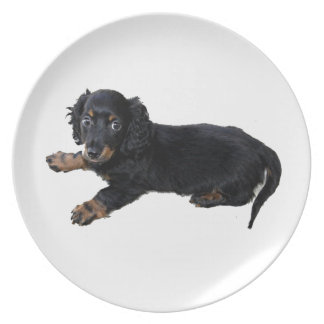 Black Dachshund/Cocker Spaniel Puppy Melamine Plate