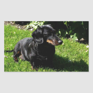 Black dachshund rectangular sticker