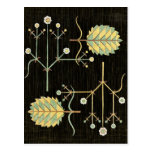 black deco floral post card