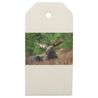 Black Deer Lying on Plants Wooden Gift Tags