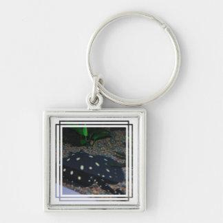 Black Devil Stingray  Keychain