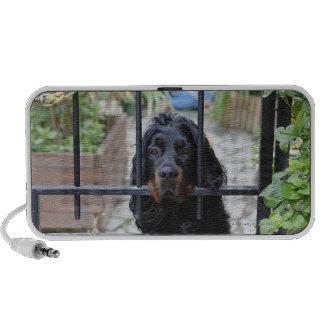 Black Dog Behind the Fence,  Bretagne, France iPod Speakers