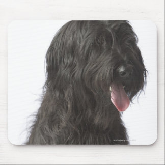 Black dog, Briard Mouse Pad