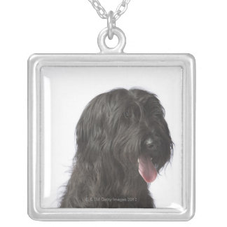 Black dog, Briard Silver Plated Necklace