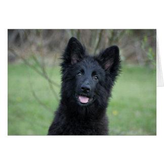 Black Dog card
