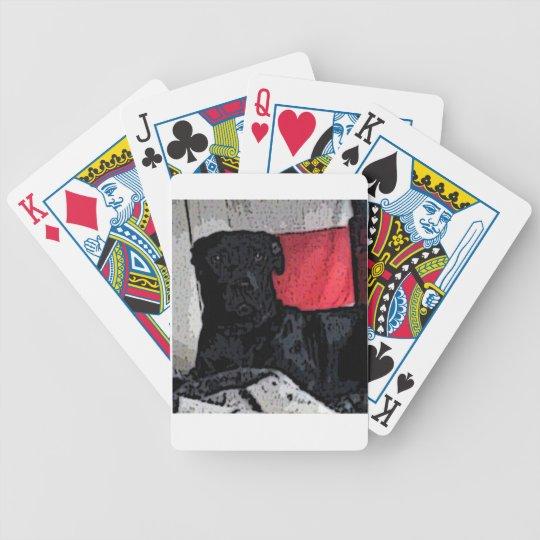 Black Dog Cards