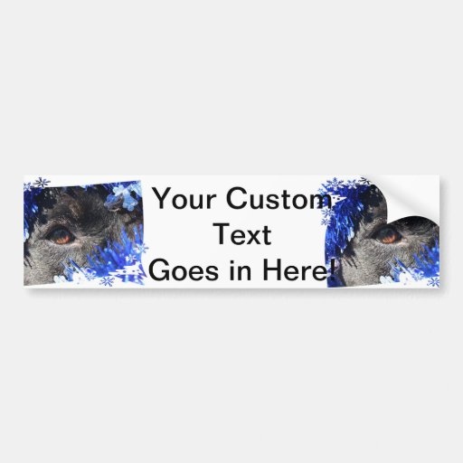 Black dog eye peering out of blue tinsel bumper sticker