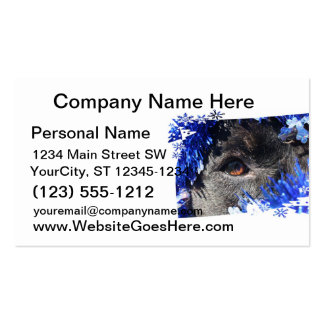 Black dog eye peering out of blue tinsel business card