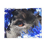 Black dog eye peering out of blue tinsel canvas prints