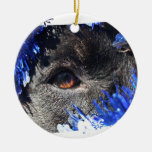 Black dog eye peering out of blue tinsel christmas tree ornaments