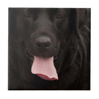 Black dog face tile