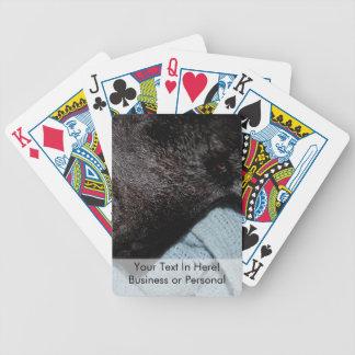 black dog head on blue blanket canine animal pet poker cards