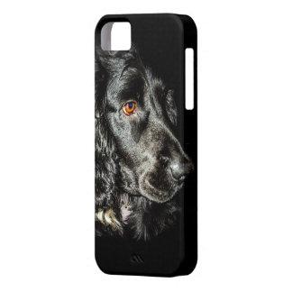 Black Dog iPhone SE/5/5s Case