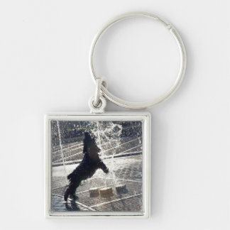 Black dog jumping through fountain on waterside keychains