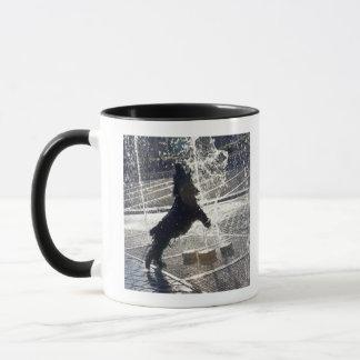 Black dog jumping through fountain on waterside mug