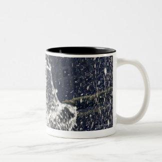 Black dog jumping through fountain on waterside Two-Tone coffee mug