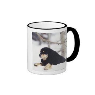 Black dog lying in snow coffee mug