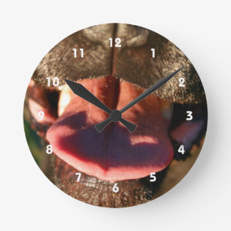 black dog nose pink tongue close up round clock