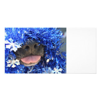 Black dog nose tongue out blue tinsel photo card