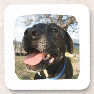 Black Dog Pink Tongue Smiling In Camera Coaster