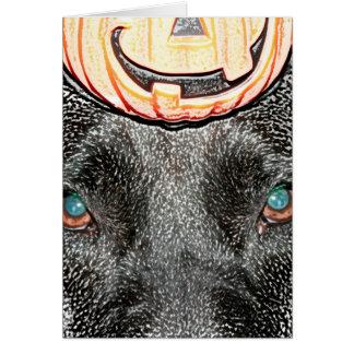 black dog pumpkin on head sketch card