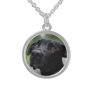 black dog round pendant necklace