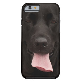 Black dog tough iPhone 6 case
