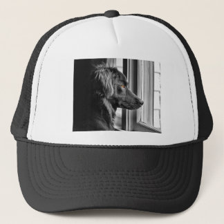 Black dog trucker hat