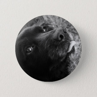 Black Dog With Tongue Out Button