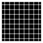 Black Dots or White Dots? Poster