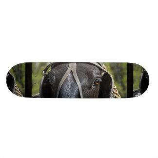 Black Draft Horse  Skateboard