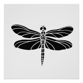 Black Dragonfly Poster