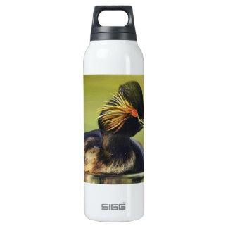 Black Duck bird portrait painting SIGG Thermo 0.5L Insulated Bottle