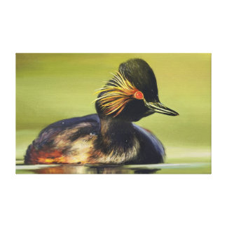 Black duck canvas gallery wrapped canvas