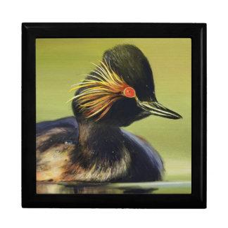 Black Duck giftbox Keepsake Box