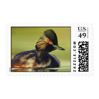 Black Duck stamp