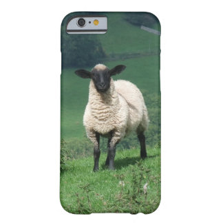 Black eared sheep, Barely There iPhone 6 case