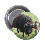 Black Ewe 2 Inch Round Button