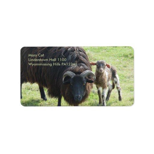Black Ewe Address Label