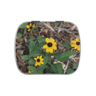 black eye susan flowers pretty field yellow flower jelly belly candy tin