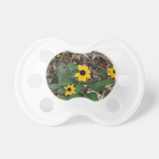 black eye susan flowers pretty field yellow flower pacifier
