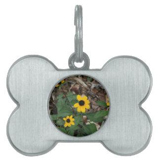 black eye susan flowers pretty field yellow flower pet ID tags