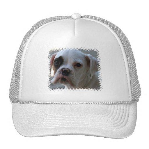 Black Eyed Boxer Dog Baseball Hat