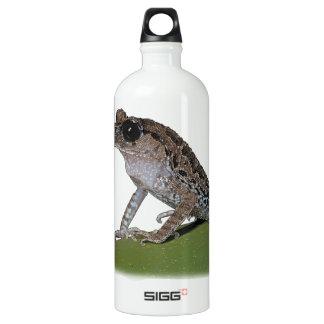 Black-eyed Litter Frog Water Bottle SIGG