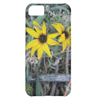 Black Eyed Susan 001 Rocky Mountain Arsenal 2012.J Cover For iPhone 5C