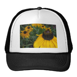 Black Eyed Susan 3 Trucker Hats