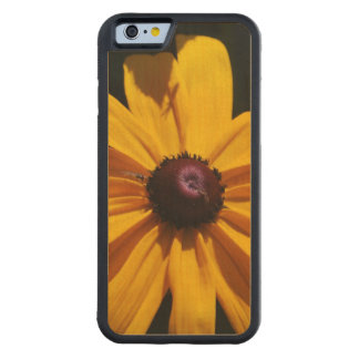 black-eyed-susan-46 carved® maple iPhone 6 bumper