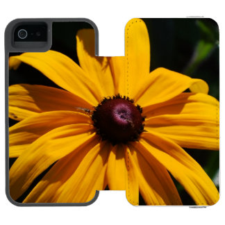 black-eyed-susan-46 incipio watson™ iPhone 5 wallet case