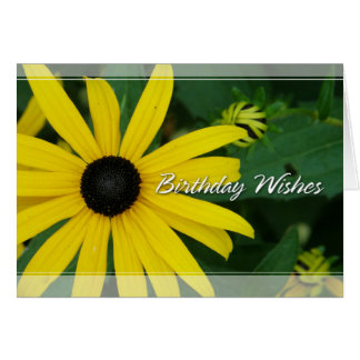 Black-Eyed Susan Birthday Cards