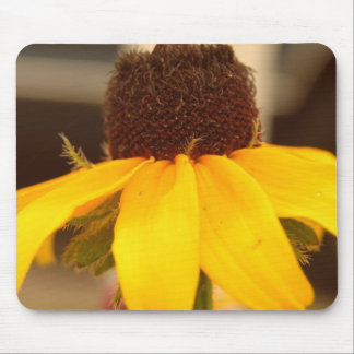 Black Eyed Susan Blossom Mouse Pad